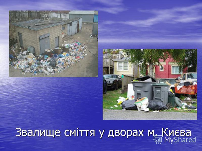 Звалище сміття у дворах м. Києва