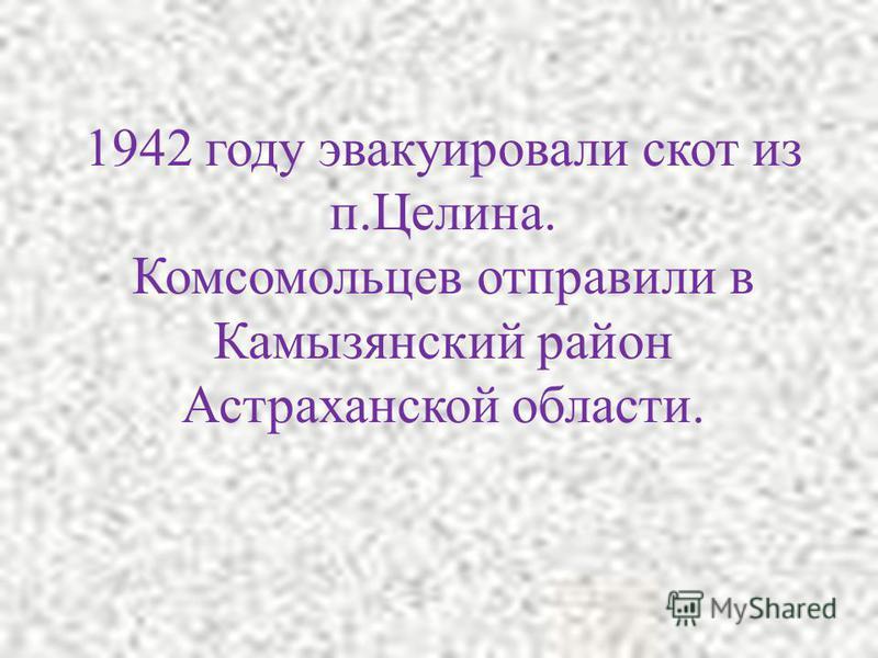 Сталинградская область. Эвакуация.