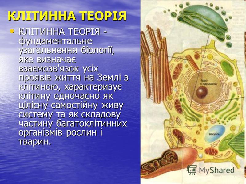 КЛІТИННА ТЕОРІЯ КЛІТИННА ТЕОРІЯ - фундаментальне узагальнення біології, яке визначає взаємозв'язок усіх проявів життя на Землі з клітиною, характеризує клітину одночасно як цілісну самостійну живу систему та як складову частину багатоклітинних органі