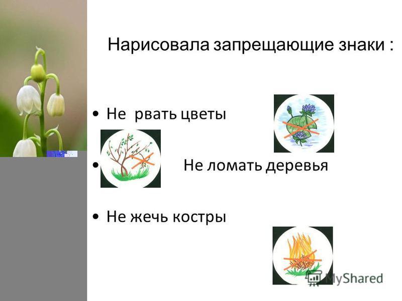 Нарисовала запрещающие знаки : Не рвать цветы Не ломать деревья Не жечь костры