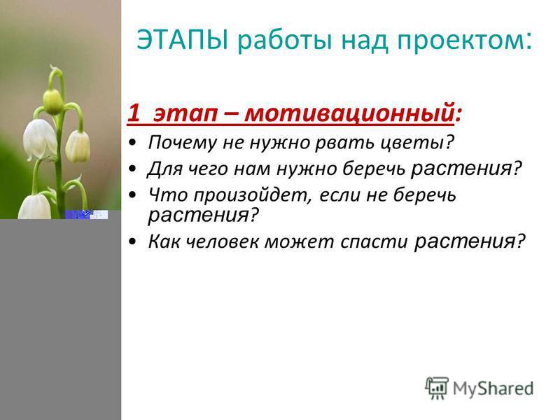 ЭТАПЫ работы над проектом : 1 этап – мотивационный: Почему не нужно рвать цветы? Для чего нам нужно беречь растения ? Что произойдет, если не беречь растения ? Как человек может спасти растения ?