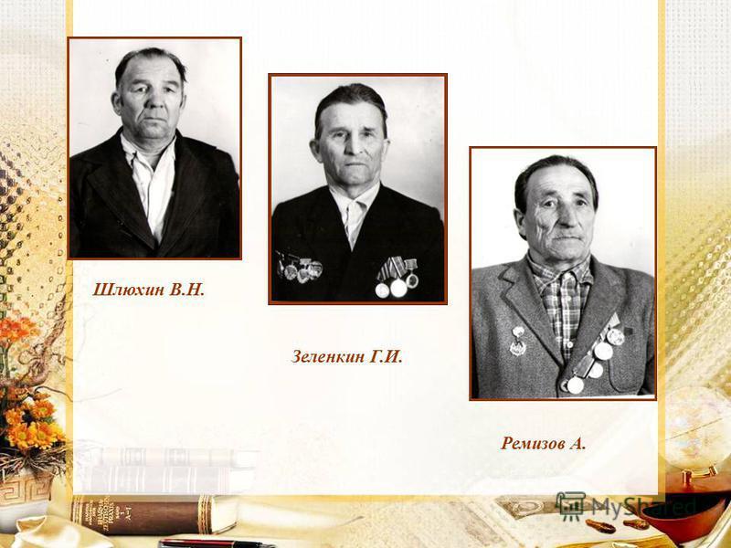 Шлюхин В.Н. Зеленкин Г.И. Ремизов А.