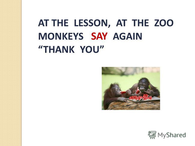 AT THE LESSON, AT THE ZOO MONKEYS SAY AGAIN THANK YOU