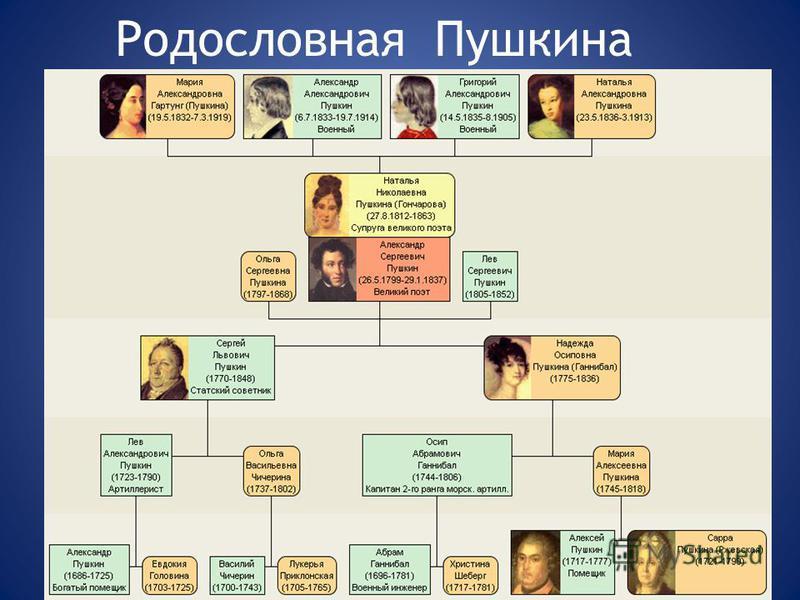Родословная Пушкина