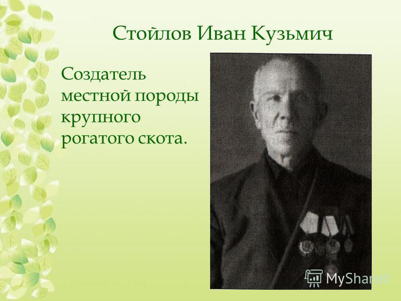 Стойлов Иван Кузьмич Создатель местной породы крупного рогатого скота.