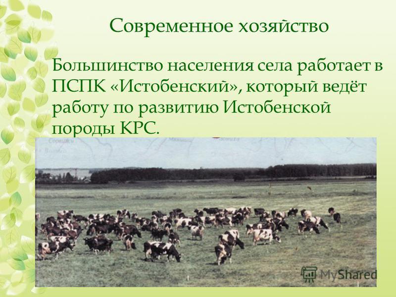 Современное хозяйство Большинство населения села работает в ПСПК «Истобенский», который ведёт работу по развитию Истобенской породы КРС.
