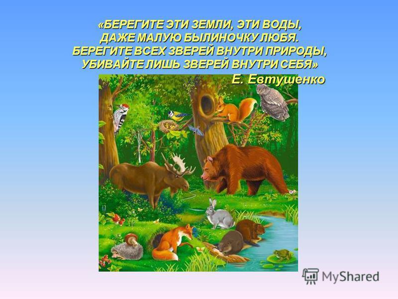 «БЕРЕГИТЕ ЭТИ ЗЕМЛИ, ЭТИ ВОДЫ, ДАЖЕ МАЛУЮ БЫЛИНОЧКУ ЛЮБЯ. БЕРЕГИТЕ ВСЕХ ЗВЕРЕЙ ВНУТРИ ПРИРОДЫ, УБИВАЙТЕ ЛИШЬ ЗВЕРЕЙ ВНУТРИ СЕБЯ» Е. Евтушенко