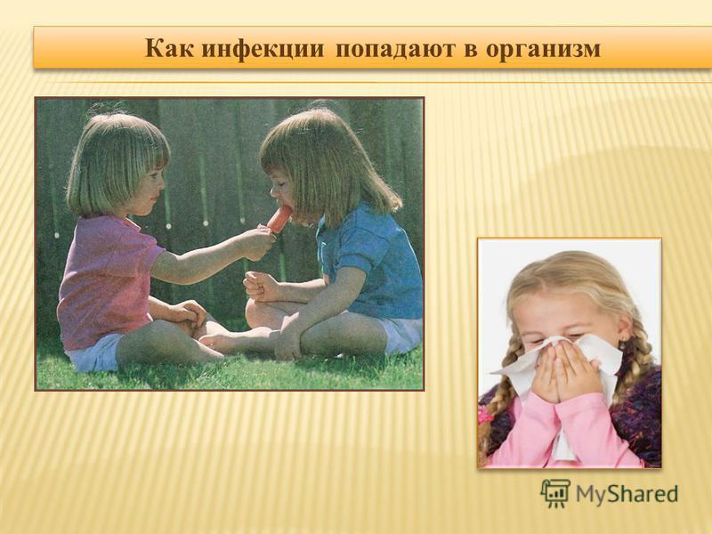 Как инфекции попадают в организм