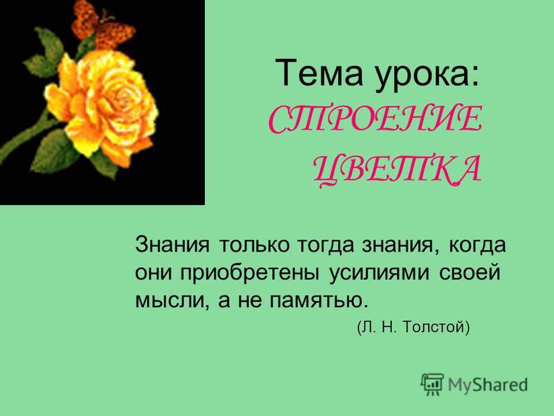 Тема урока: СТРОЕНИЕ ЦВЕТКА Знания только тогда знания, когда они приобретены усилиями своей мысли, а не памятью. (Л. Н. Толстой)