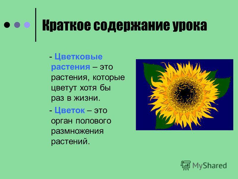 Краткое содержание урока - Цветковые растения – это растения, которые цветут хотя бы раз в жизни. - Цветок – это орган полового размножения растений.