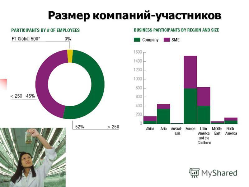 Размер компаний-участников