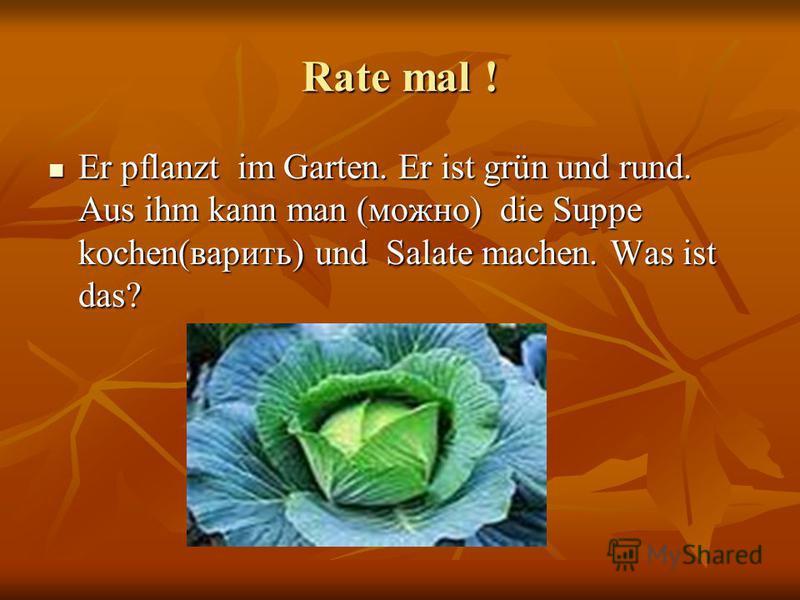 Rate mal ! Er pflanzt im Garten. Er ist grün und rund. Aus ihm kann man (можно) die Suppe kochen(варить) und Salate machen. Was ist das? Er pflanzt im Garten. Er ist grün und rund. Aus ihm kann man (можно) die Suppe kochen(варить) und Salate machen.