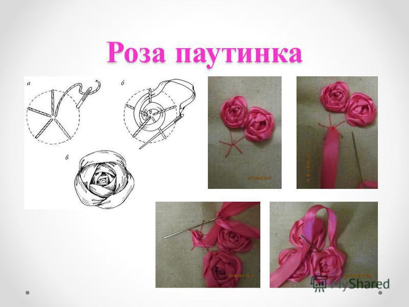 Роза паутинка