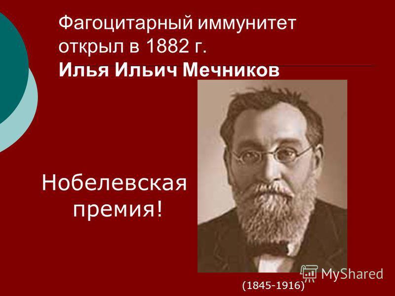Фагоцитарный иммунитет открыл в 1882 г. Илья Ильич Мечников (1845-1916) Нобелевская премия!