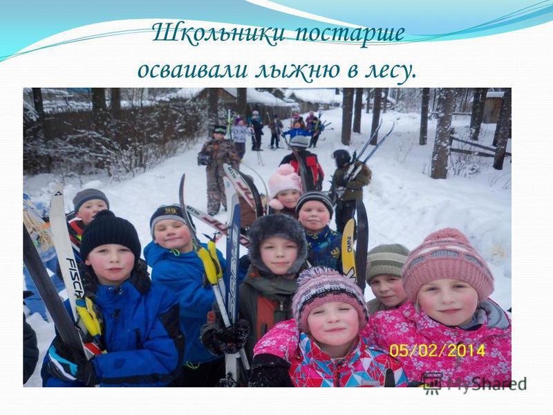 Школьники постарше осваивали лыжню в лесу.