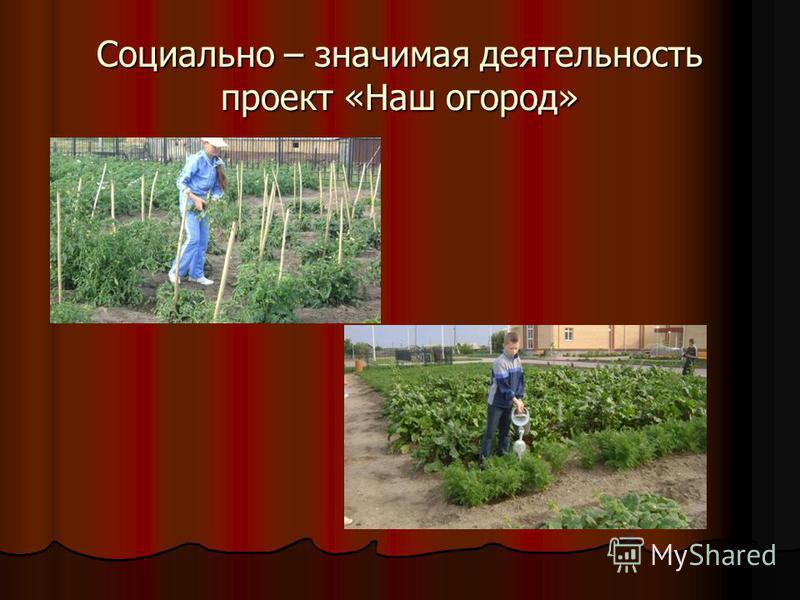 Социально – значимая деятельность проект «Наш огород»