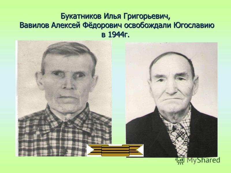Букатников Илья Григорьевич, Вавилов Алексей Фёдорович освобождали Югославию в 1944 г.
