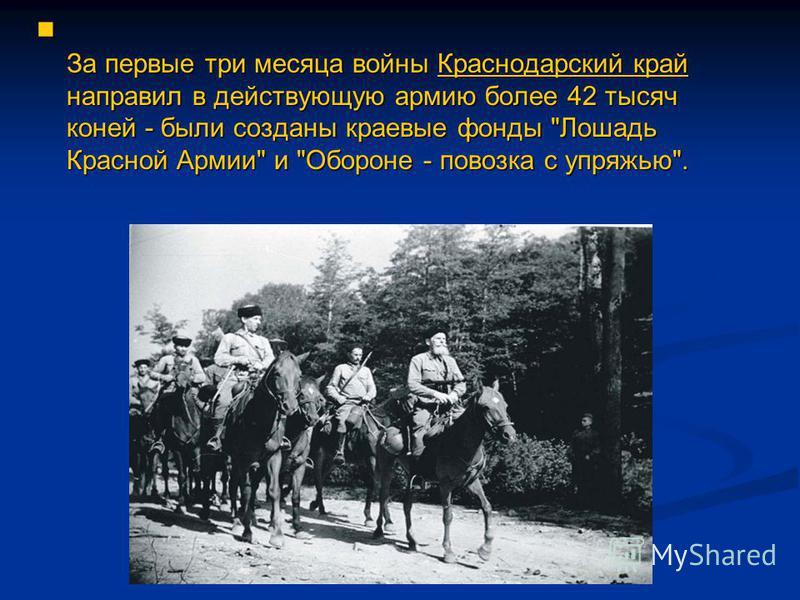 За первые три месяца войны Краснодарский край направил в действующую армию более 42 тысяч коней - были созданы краевые фонды
