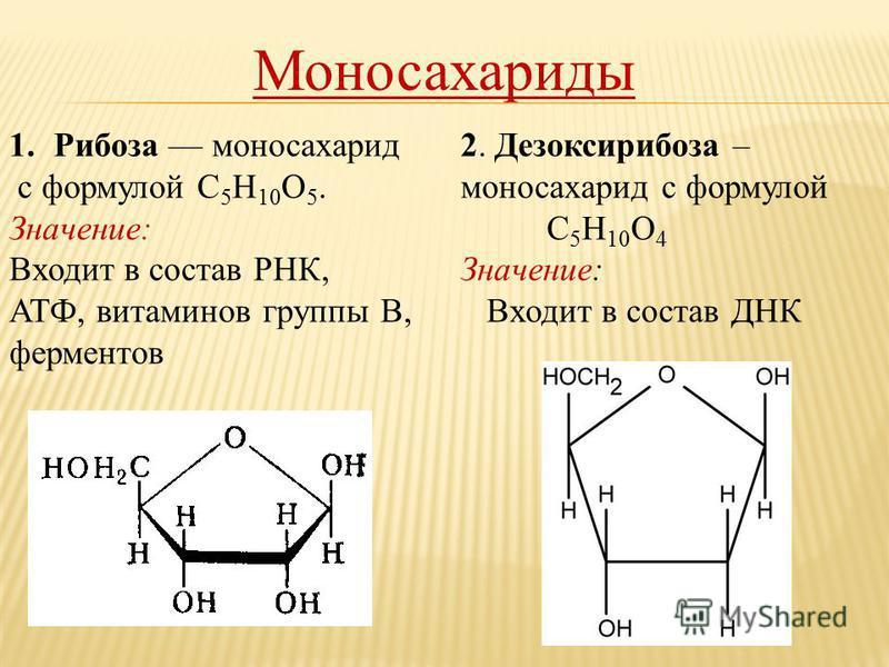 Моносахариды 1. Рибоза моносахарид с формулой С 5 Н 10 О 5. Значение: Входит в состав РНК, АТФ, витаминов группы В, ферментов 2. Дезоксирибоза – моносахарид с формулой С 5 Н 10 О 4 Значение: Входит в состав ДНК