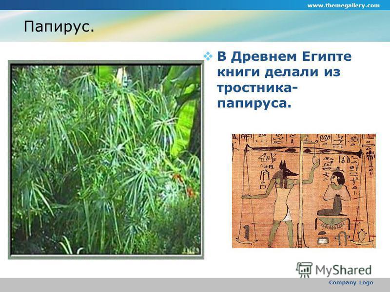 www.themegallery.com Company Logo Папирус. В Древнем Египте книги делали из тростника- папируса.