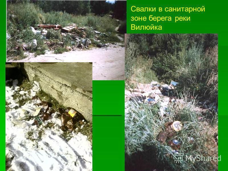 Свалки в санитарной зоне берега реки Вилюйка
