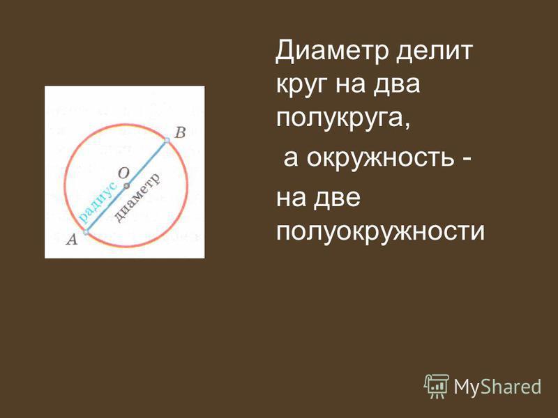 Диаметр делит круг на два полукруга, а окружность - на две полуокружности