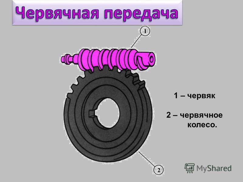 1 – червяк 2 – червячное колесо.