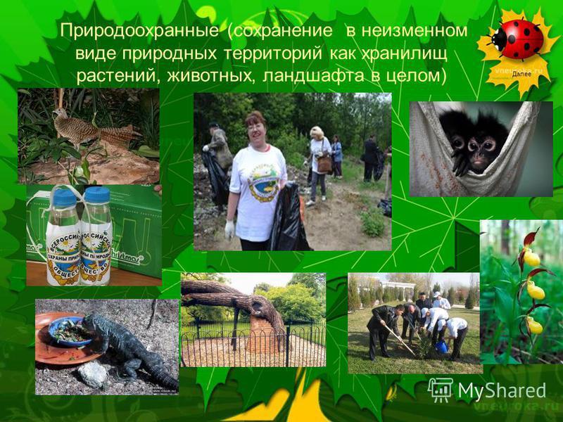 Далее Природоохранные (сохранение в неизменном виде природных территорий как хранилищ растений, животных, ландшафта в целом)