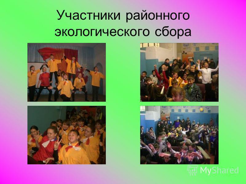 Участники районного экологического сбора
