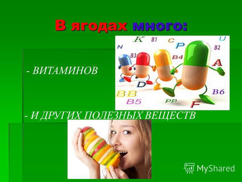 В ягодах много: - ВИТАМИНОВ - И ДРУГИХ ПОЛЕЗНЫХ ВЕЩЕСТВ