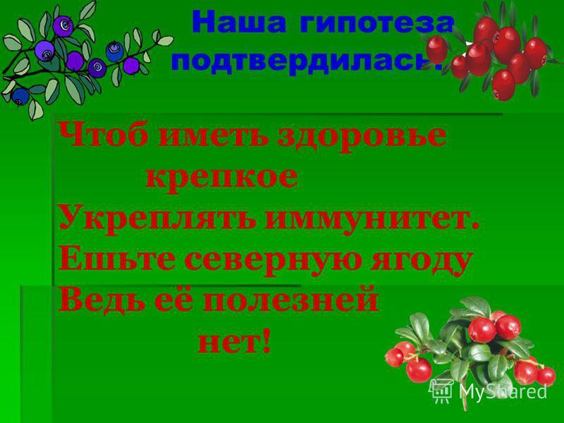 Наша гипотеза подтвердилась! Чтоб иметь здоровье крепкое Укреплять иммунитет. Ешьте северную ягоду Ведь её полезней нет!