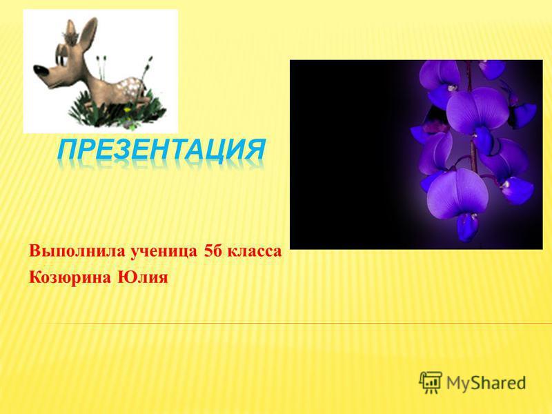 Выполнила ученица 5 б класса Козюрина Юлия