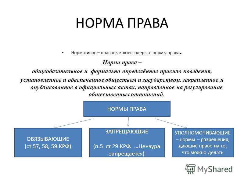 НОРМА ПРАВА Нормативно – правовые акты содержат нормы права. Норма права – общеобязательное и формально-определённое правило поведения, установленное и обеспеченное обществом и государством, закрепленное и опубликованное в официальных актах, направле