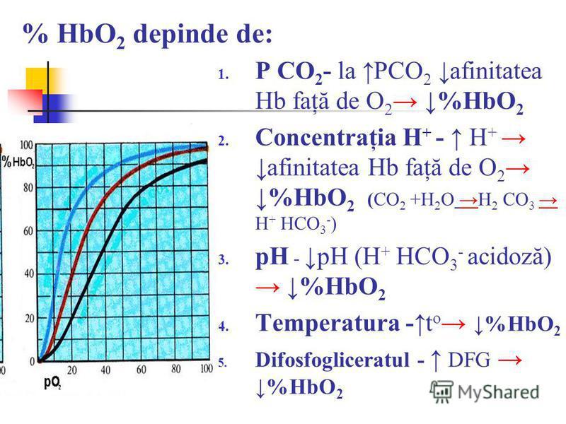 % HbO 2 depinde de: 1. P CO 2 - la PCO 2 afinitatea Hb faţă de O 2 %HbO 2 2. Concentraţia H + - H + afinitatea Hb faţă de O 2 %HbO 2 (CO 2 +H 2 O H 2 CO 3 H + HCO 3 - ) 3. pH -pH (H + HCO 3 - acidoză) %HbO 2 4. Temperatura -t o %HbO 2 5. Difosfoglice