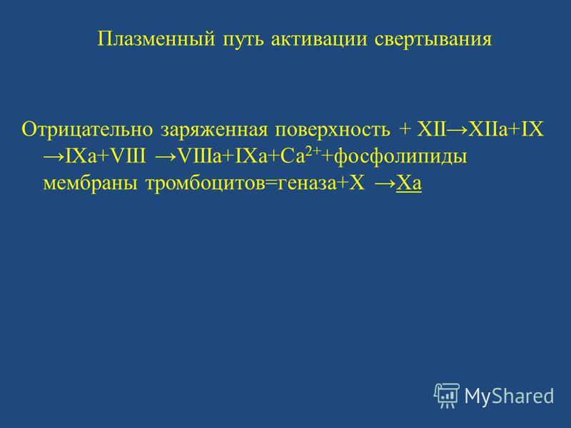 Плазменный путь активации свертывания Отрицательно заряженная поверхность + XIIXIIa+IX IXa+VIII VIIIa+IXa+Ca 2+ +фосфолипиды мембраны тромбоцитов=генеза+X Xa