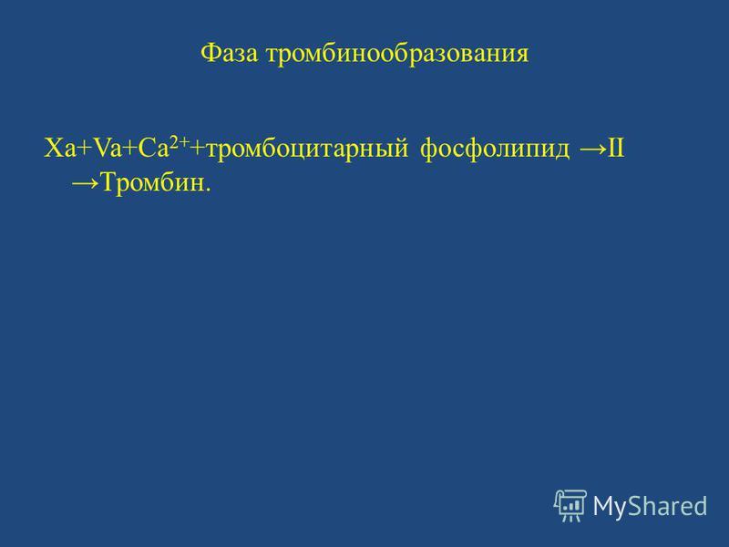 Фаза тромбинообразования Xa+Va+Ca 2+ +тромбоцитарный фосфолипид IIТромбин.