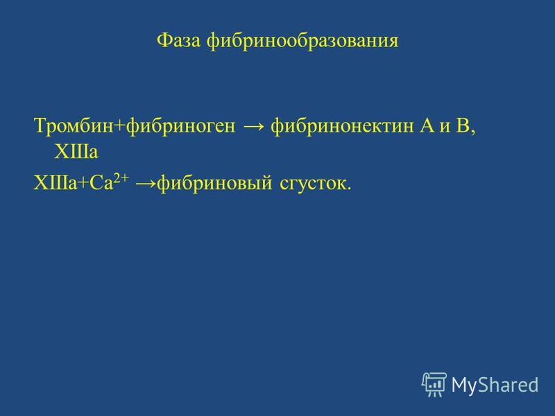 Фаза фибринообразования Тромбин+фибриноген фибринонектин A и B, XIIIa XIIIa+Ca 2+фибриновый сгусток.