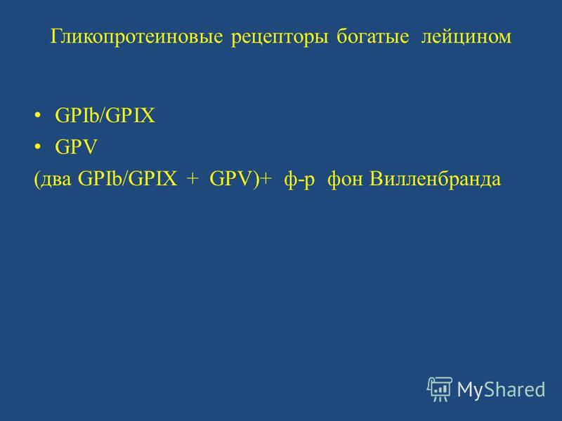 Гликопротеиновые рецепторы богатые лейцином GPIb/GPIX GPV (два GPIb/GPIX + GPV)+ ф-р фон Вилленбранда