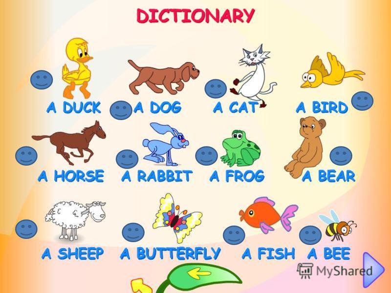 English dictionary animals
