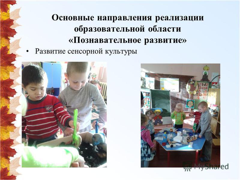 Основные направления реализации образовательной области «Познавательное развитие» Развитие сенсорной культуры