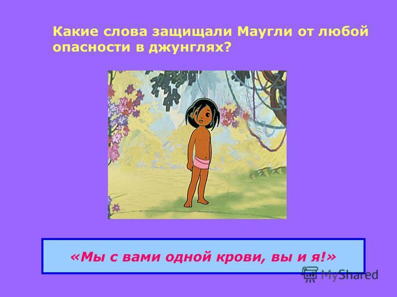 Какие слова защищали Маугли от любой опасности в джунглях? «Мы с вами одной крови, вы и я!»