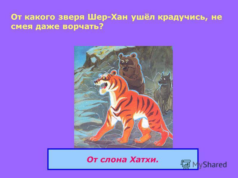 От какого зверя Шер-Хан ушёл крадучись, не смея даже ворчать? От слона Хатхи.