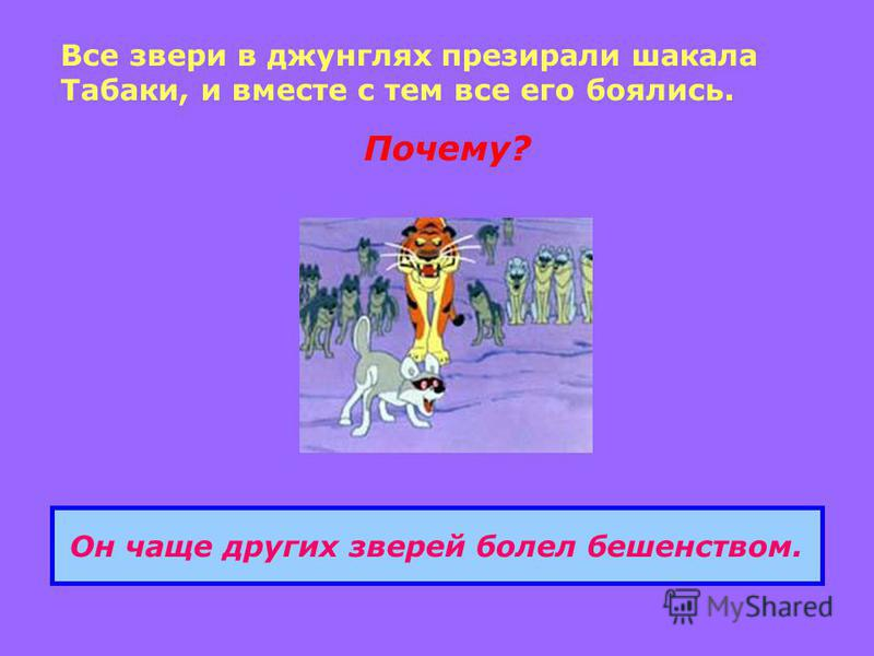 Все звери в джунглях презирали шакала Табаки, и вместе с тем все его боялись. Почему? Он чаще других зверей болел бешенством.