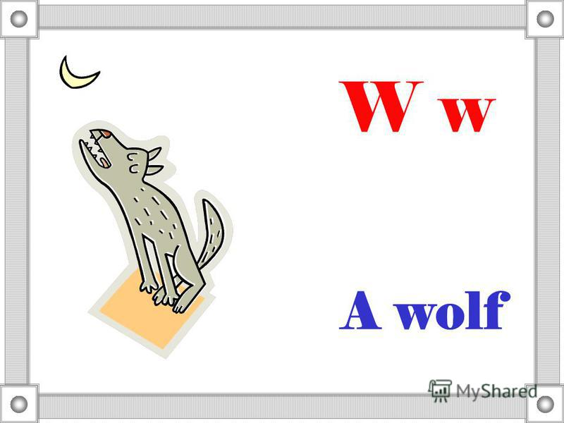 A wolf W w
