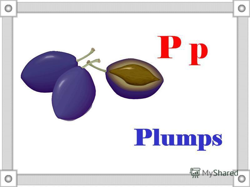 Plumps P p