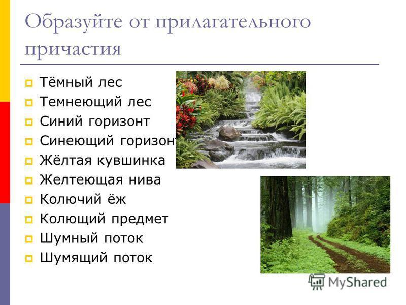 Образуйте от прилагательного причастия Тёмный лес Темнеющий лес Синий горизонт Синеющий горизонт Жёлтая кувшинка Желтеющая нива Колючий ёж Колющий предмет Шумный поток Шумящий поток