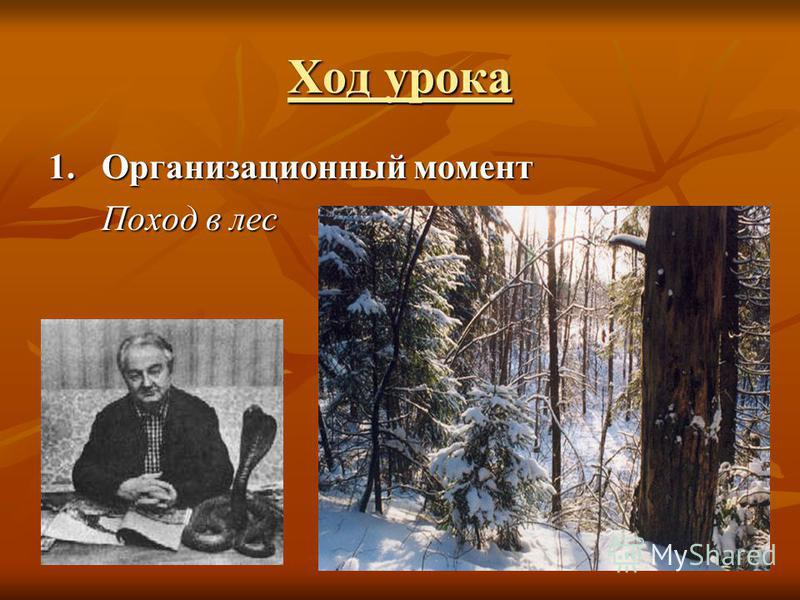 Ход урока 1. Организационный момент Поход в лес