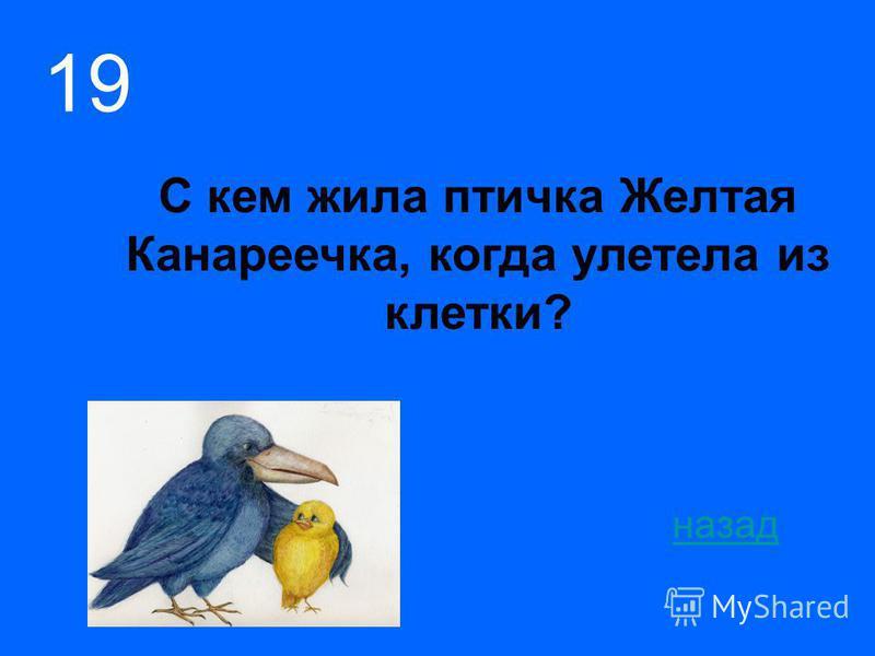 С кем жила птичка Желтая Канареечка, когда улетела из клетки? назад 19