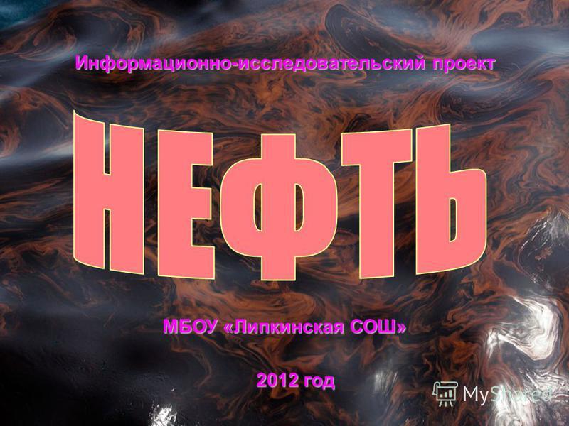 Информационно-исследовательский проект МБОУ «Липкинская СОШ» 2012 год