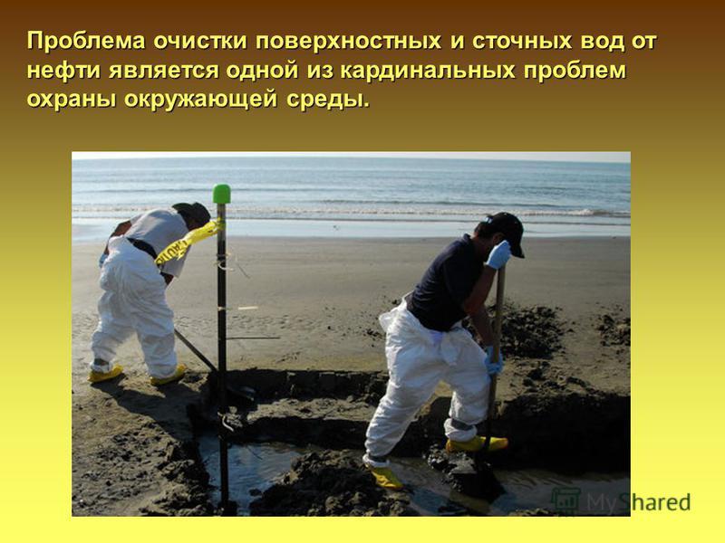 Проблема очистки поверхностных и сточных вод от нефти является одной из кардинальных проблем охраны окружающей среды.